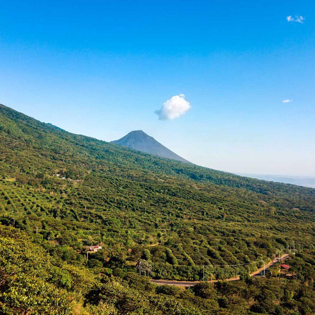 Salvador SHG volcano soil
