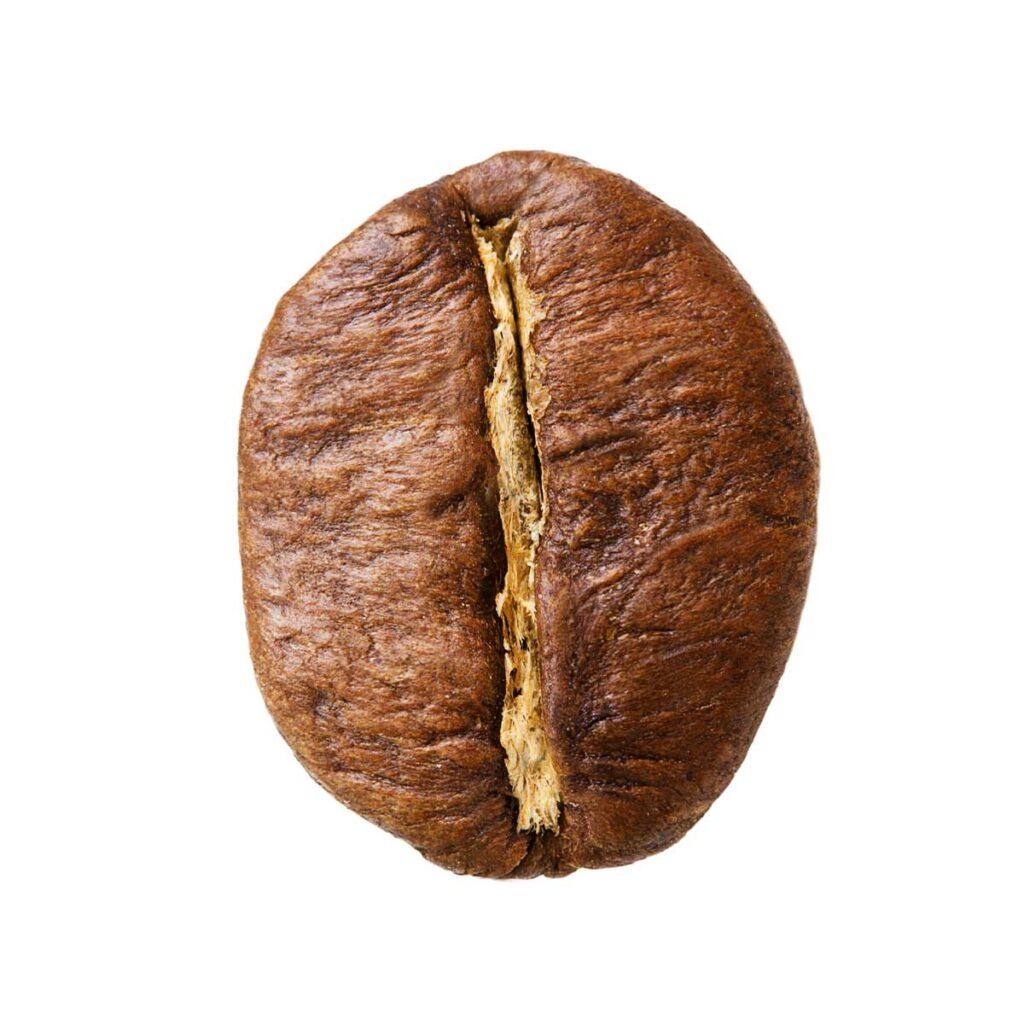 阿拉比卡和魯達咖啡豆比較